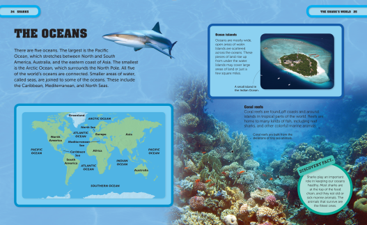 Pages from Shark Factivity (2).png