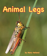 AnimalLegs_187
