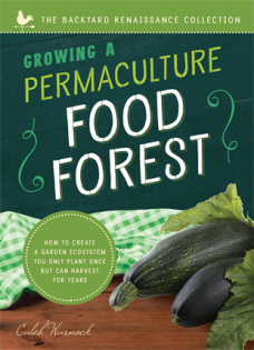 permaculturefoodforest.jpg
