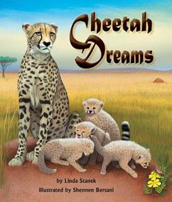 CheetahDreams_295